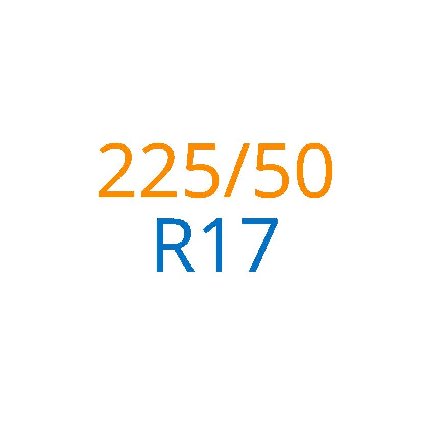 225/50 R17