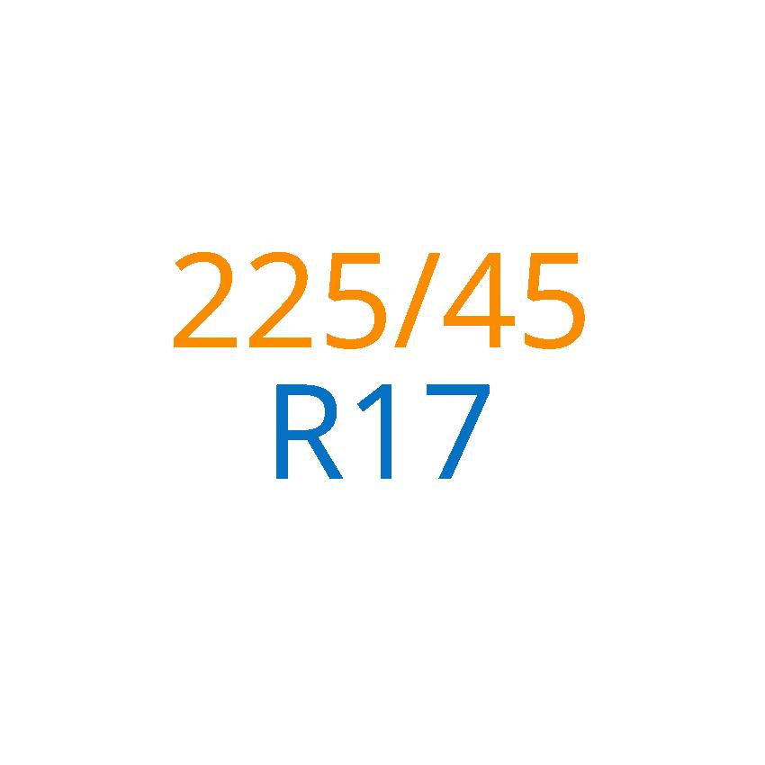 225/45 R17