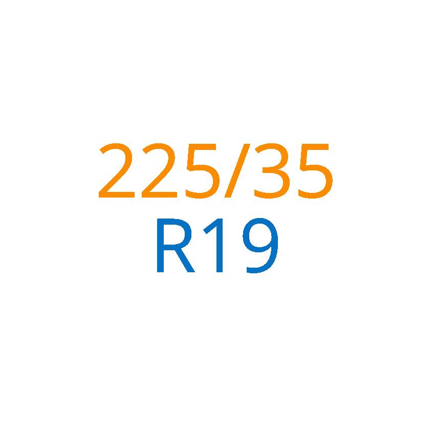225/35 R19